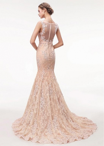 Stunning Champagne Lace V-neck Neckline Floor-length Mermaid Evening Dress