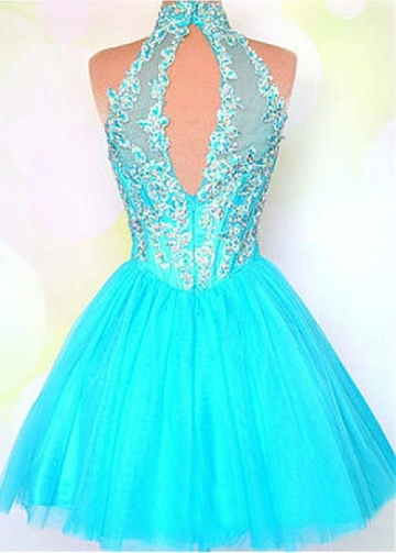 Chic Tulle High Collar Neckline Short A-line Homecoming Dress