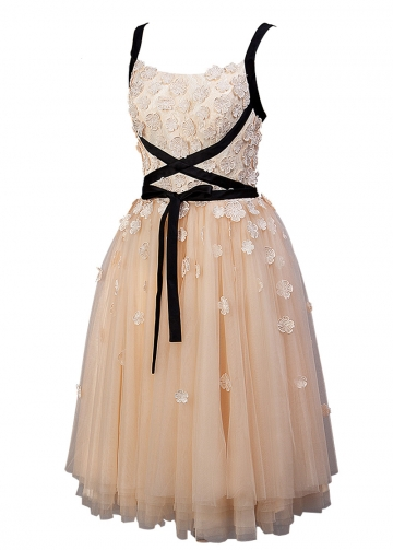 Romantic Tulle Spaghetti Straps Neckline Tea-length A-line Homecoming Dress With Lace Appliques