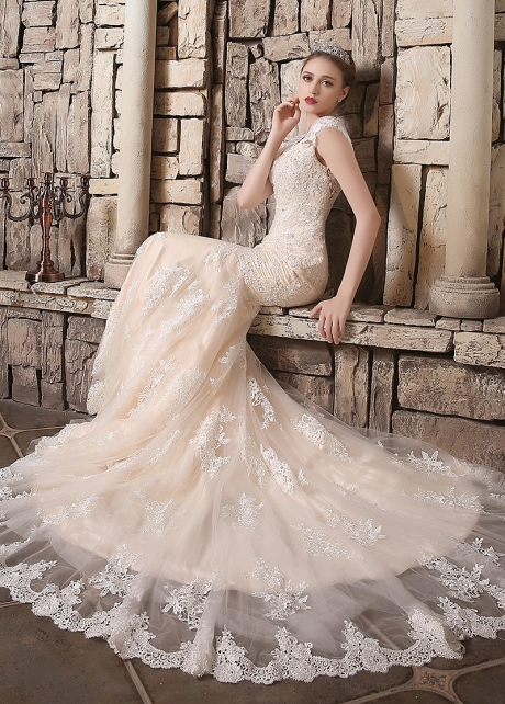 Gorgeous Tulle V-neck Neckline Mermaid Wedding Dresses
