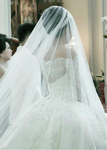 Fantastic Tulle Off-the-shoulder Neckline Ball Gown Wedding Dresses With Beaded Lace Appliques