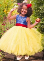 Pretty Sequin Lace & Tulle Square Neckline A-line Flower Girl Dress With Belt