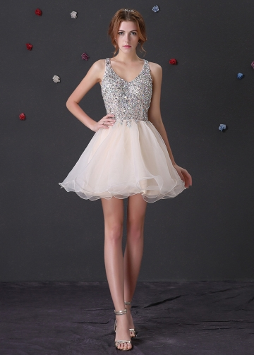 Brilliant Organza Beaded Neckline A-Line Homecoming / Sweet 16 Dresses