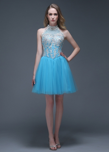 Wonderful Tulle High Collar Neckline Short A-line Cocktail Dresses